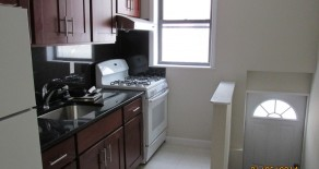 $2300- BEAUTIFUL 2 BR DUPLEX , BASEMENT, EIK , W/D, P.S. 10  IN PARK SLOPE