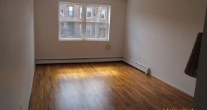 VERY LARGE SUNNY 1 BR , LIVING ROOM , SMALL BALCONY IN WINDSOR TERRACE
