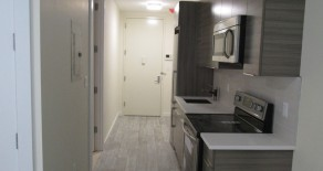 NO FEE BRAND NEW STUDIO,GORGEOUS KITCHEN , BATHROOM IN  DITMAS PARK