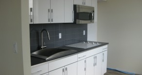 NO FEE LARGE 1 BR, LR, MODERN KITCHEN, BATHROOM IN DITMAS PARK