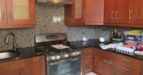 2 bedroom duplex , w/d , large backyard , mlr , dr eik in windsor terrace