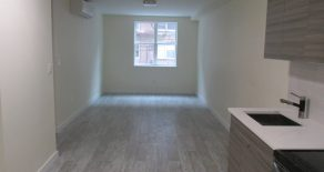 NO FEE  BRAND NEW 3BR , LR , KITCHEN , 1 1/2 BATHS IN DITMAS PARK