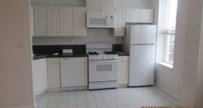 Beautiful 1000 sq ft 1 br , living room , kitchen , walk-in closet located in Windsor Terrace