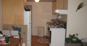 BEAUTIFUL LARGE 1 BR, LR WITH FIRE PLACE, SHARED YARD IN PARK SLOPE